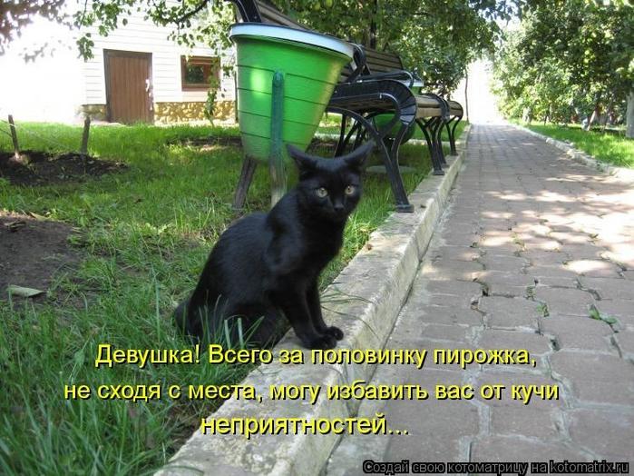 kotomatritsa_tH (700x524, 322Kb)