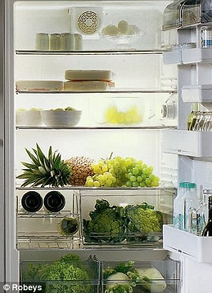 большой холодильник фото 4 (306x423, 137Kb)