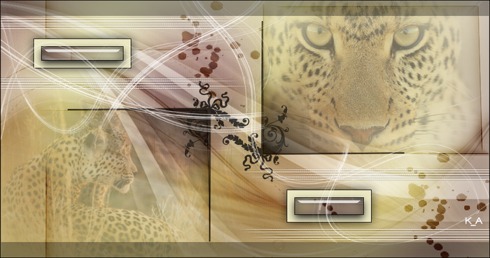 3713192_Cheetah1 (700x369, 429Kb)