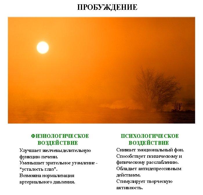 лечебные_картинки_leghebnue_kartinki (700x675, 174Kb)