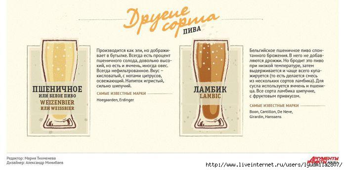 beer-infogr (700x344, 111Kb)