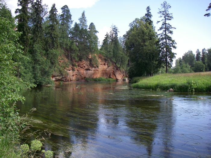 Oredezh_river (700x525, 340Kb)