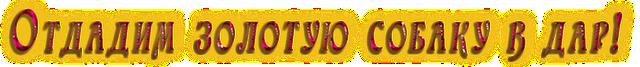 3045391_otdadimzrolotyusobaky (640x67, 86Kb)