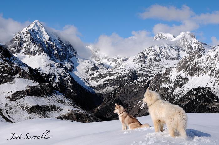 горы фото 6 (700x464, 449Kb)