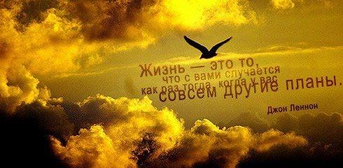 1343360211_tsitatj1 (490x240, 93Kb)
