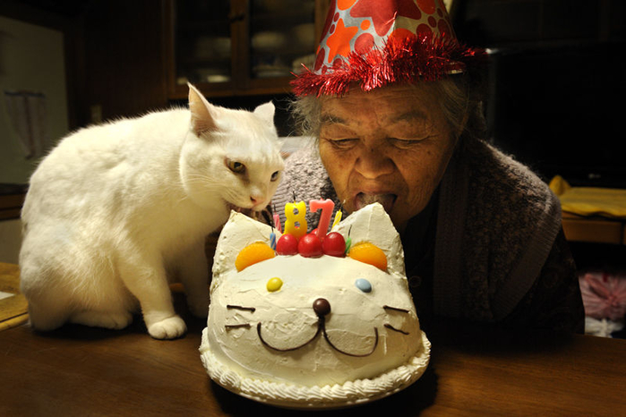 26-бабушка и кот - фотоистория  Миёко Ихара (700x466, 304Kb)
