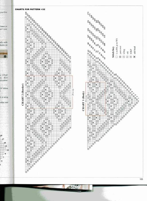 DSCN0786 (513x700, 167Kb)