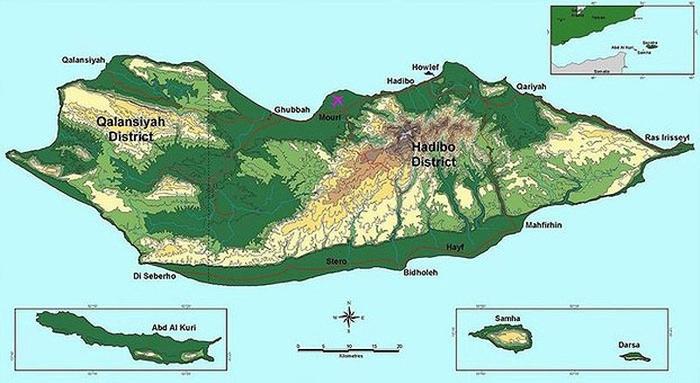 Socotra01 (700x383, 174Kb)