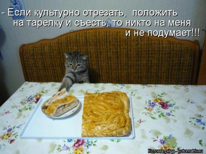 kotomatritsa_Z8 (700x524, 251Kb)