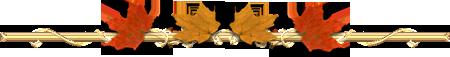48881781_Bezimewry (450x57, 29Kb)