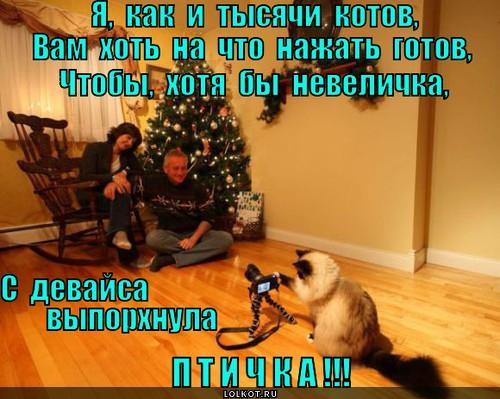 na-vsyo-gotov_1379579119 (500x399, 250Kb)
