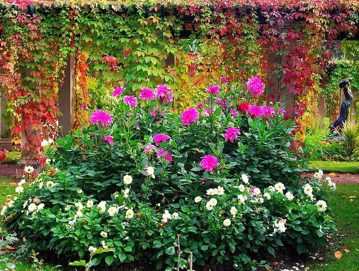 Осень в парке Александрия! Петергоф!