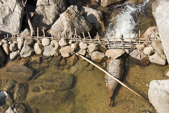 Ловушки для ловли рыбы
