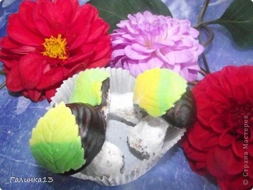 Сладкие шоколадные грибочки. Рецепт (19) (520x390, 114Kb)