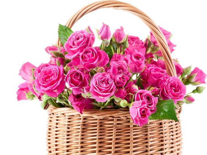 http://img0.liveinternet.ru/images/attach/c/9/105/691/105691660_104555800_3495592400x1800.jpg