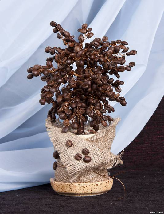 Деревья своими руками из кофе