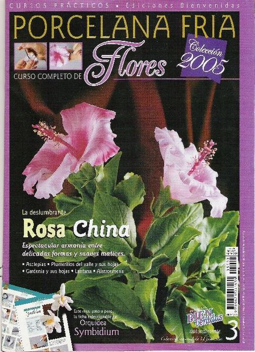 rosa_china_2005_1 (508x700, 356Kb)