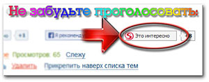940219_vote (300x118, 13Kb)