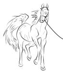 Превью Horse_lineart_by_Natoli (614x700, 116Kb)
