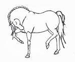Превью horse_sketch_5_by_conspiciopotenstilus-d4m1zxs (700x577, 120Kb)