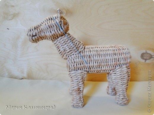 плетение из газет. лошадка из газетных трубочек (40) (520x390, 100Kb)