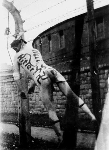 Маунтхаузен был освобождён американскими войсками 5 мая 1945 года, но бессм