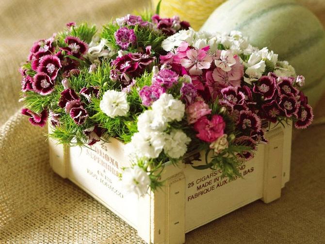 Офигенные с цветами