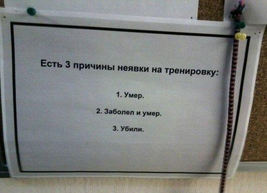 smeshnie_kartinki_138068497938 (550x397, 99Kb)