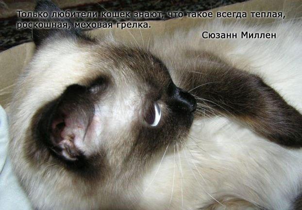 1381128539_www.radionetplus.ru-5 (622x432, 144Kb)