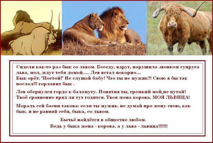 как удержать тельца мужчину даме льву