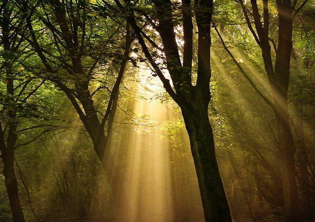 Sun_rays_003 (637x448, 339Kb)