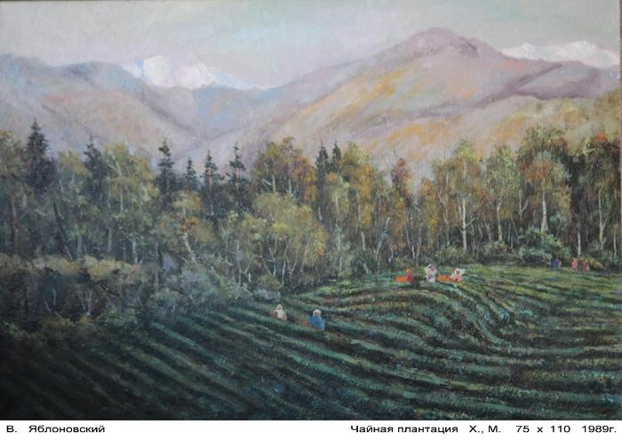 Чайная  плантация (700x496, 258Kb)