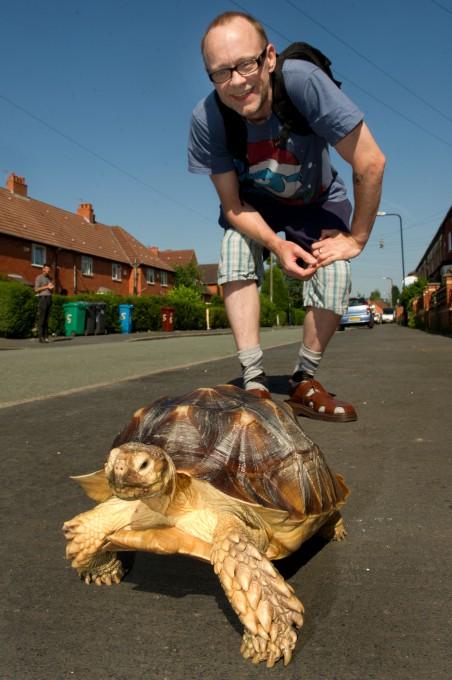 черепаха фото (452x680, 253Kb)