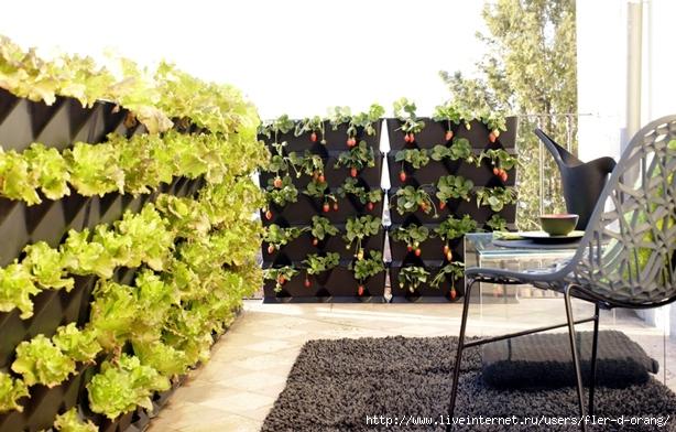 mini-vertical-garden-03 (614x392, 236Kb)