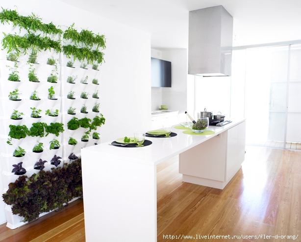 mini-vertical-garden-02 (614x493, 197Kb)