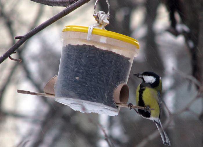 Кормушка для птиц своими руками школа