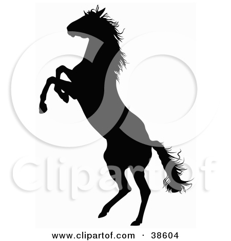 38604-Black-Silhouette-Of-A-Rearing-Horse (450x470, 65Kb)