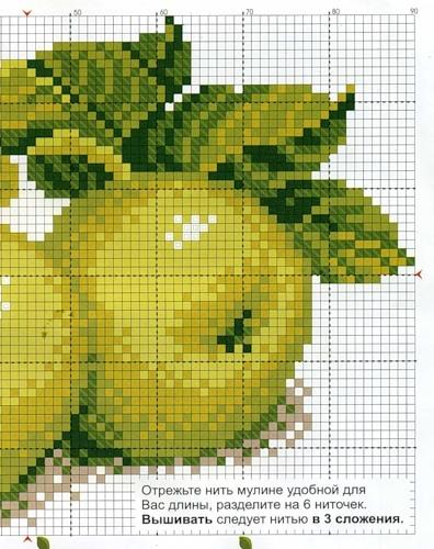 Вышивки крестом зеленое яблоко 55