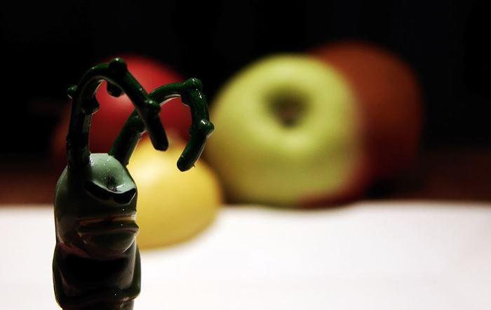 «Блестящие» фрукты: что это такое?