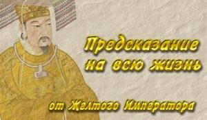 yellow-emperor-banner (300x175, 17Kb)