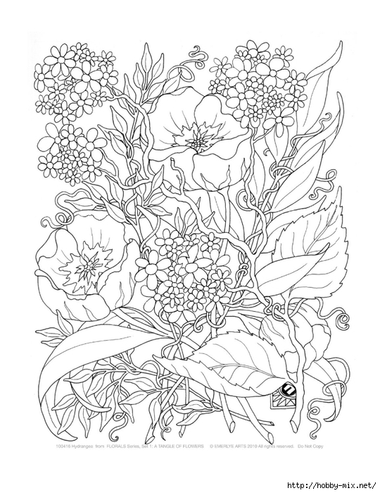 Adult-Coloring-Pages-A-Tangle-of-Flowers-Set (540x700, 263Kb)