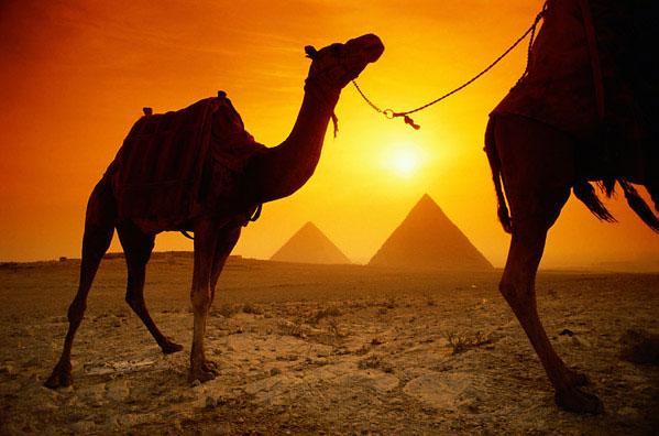 egypt1 (599x396, 60Kb)