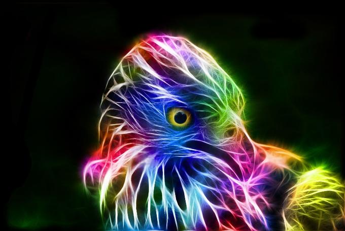 fractal_hawk_by_minimoo64-d3azzjd (680x455, 216Kb)