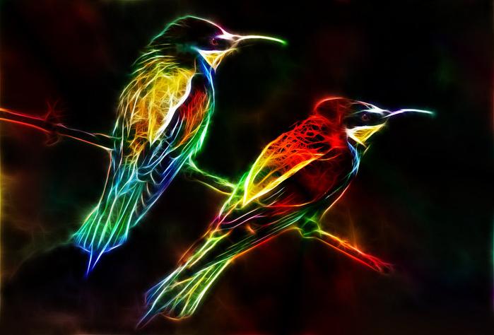 fractalius_birds_by_minimoo64-d5ilq45 (700x474, 296Kb)