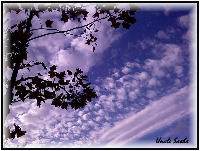 foto-0037.10.13.1 (652x492, 105Kb)