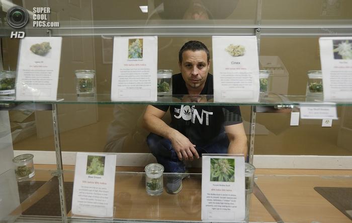магазин по продаже медицинской марихуаны 5 (700x445, 208Kb)