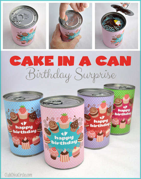 Cake-in-a-Can-Birthday-Surprise (551x700, 378Kb)