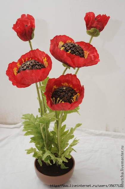 8329756745-tsvety-floristika-kofejnye-maki (420x632, 178Kb)