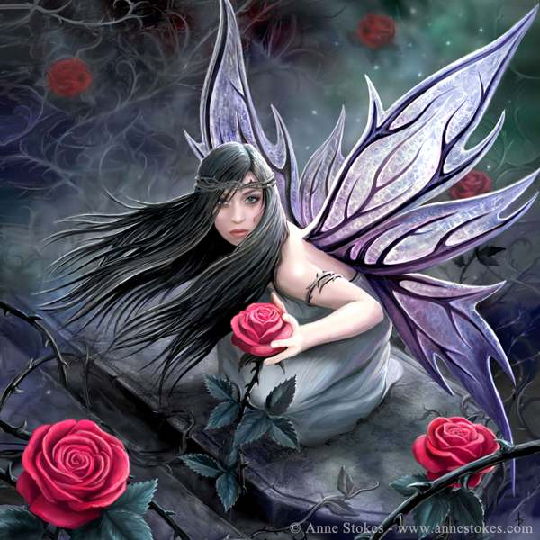 rose_fairy_by_ironshod-d3gozw2 (600x600, 295Kb)