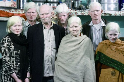 1382092178_semya-albinosov (500x333, 42Kb)